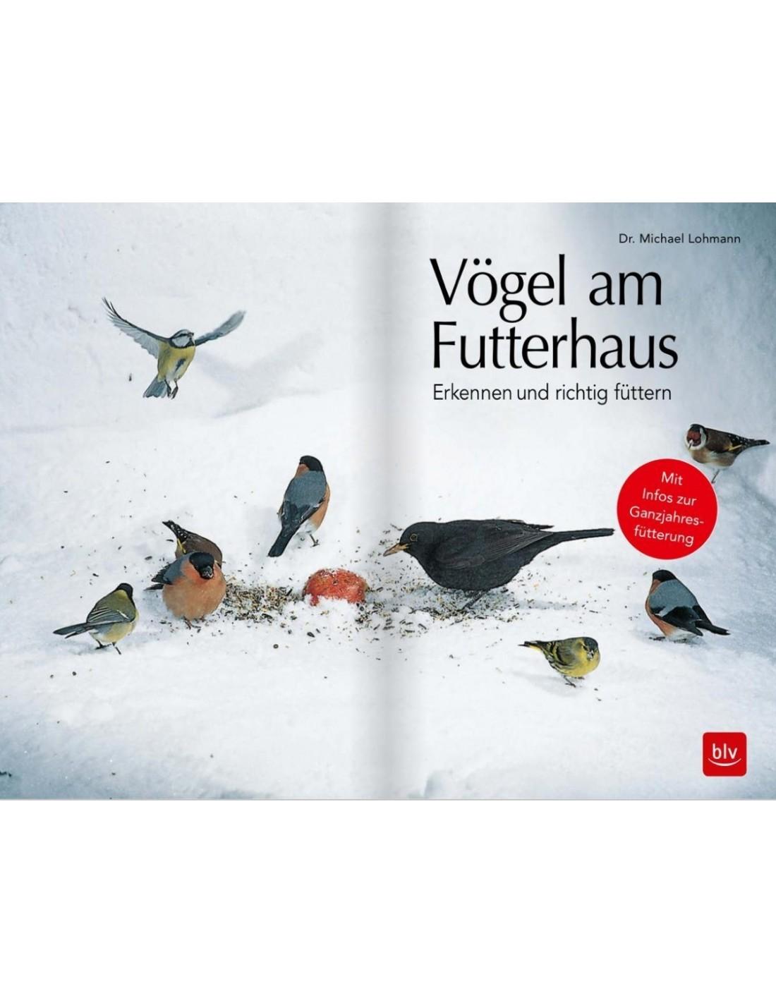 vögel am futterhaus  erkennen und richtig füttern mit