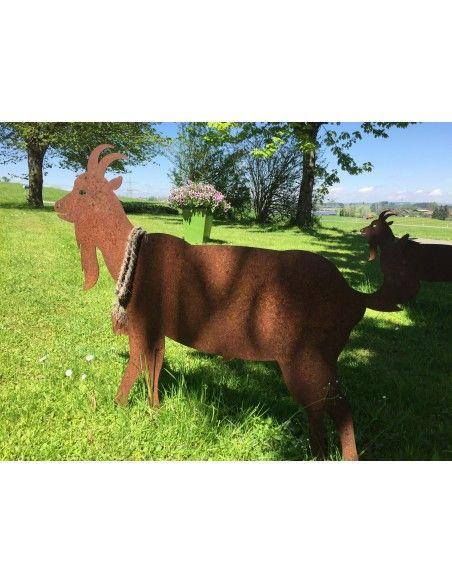 Allgäu Deko XXL Edelrost Ziege mit Glocke 75  cm hoch - XXL mit Querstangen - Tierfigur für den Garten  Schöne große, fast lebe