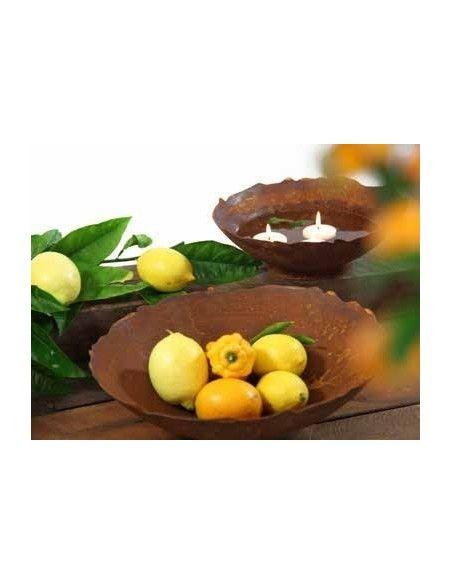 runde Pflanzschalen Blumenschale Metall - Ripple - mit leicht welligem Rand - Durchmesser 34 cm Schale mit welligem Rand Innend