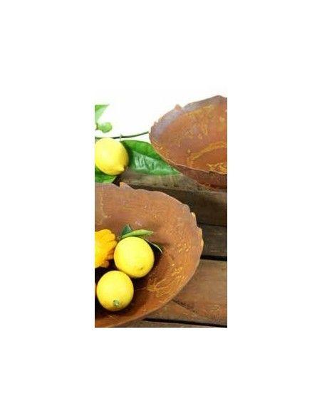 runde Pflanzschalen Ripple Schale mit leicht welligem Rand, auf Platte, Durchmesser 27 cm Schale mit welligem Rand Innendurchme