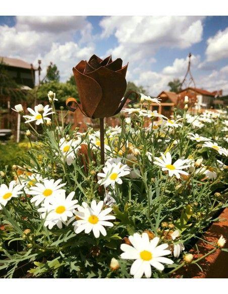 Start Rose Gartenstecker - 35 cm hoch  Voll blühende Edelrost Rose mit 4 Blätter Länge 35 cm zum Stecken  Dekorationen mit