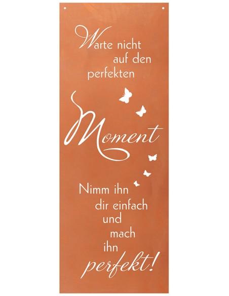 Spruch Warte nicht auf den perfekten Moment, nimm Ihn Dir einfach und mach in perfekt - Blechschild mit Spruch