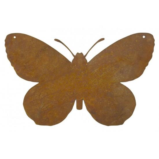 Blanko-Rostschild Schmetterling
