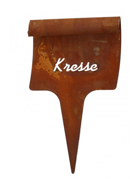 Beetstecker Kresse