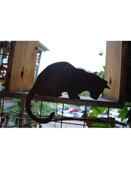 Katze für Kante nach unten schauend
