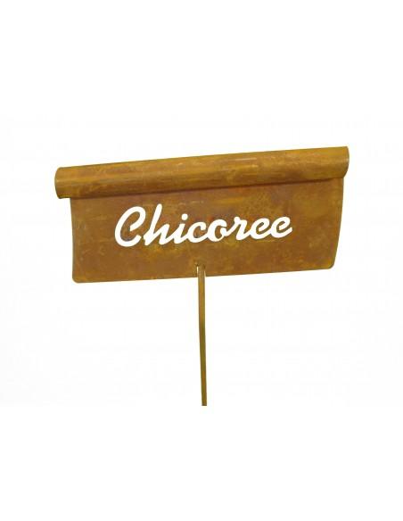 Gemüsestecker Chicoree