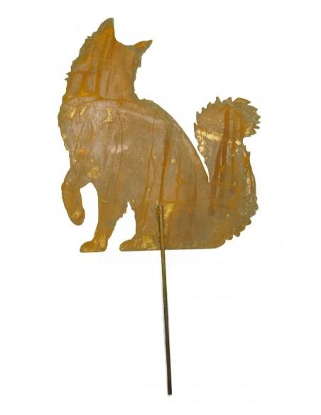 Edelrost Katze Maine Coon sitzend, Schwanz nach oben, mit kurzem Stab