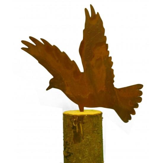 Taube auf Baumstamm