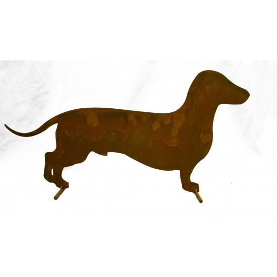 Hund -Lumpi-