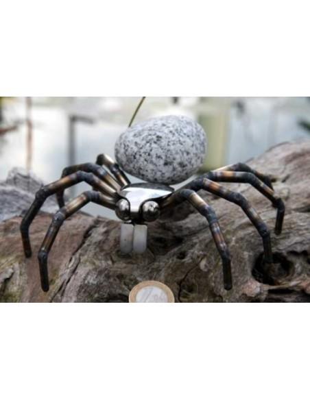 Spinne - Steintier